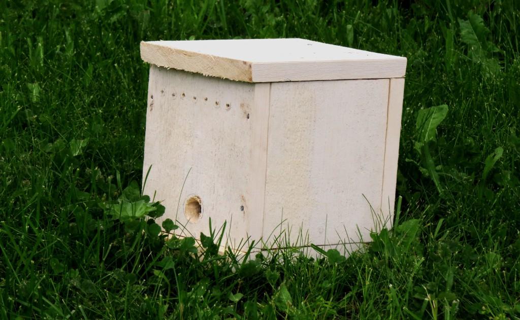 For inspeksjon av denne enkle kassen kan du bare å vippe lokket såvidt litt opp, og smyge inn en pleksiglassplate. Deretter kan lokket tas helt av. Da slipper du tidkrevende montering av en innebygd glassplate. Foto: Tor Bollingmo.